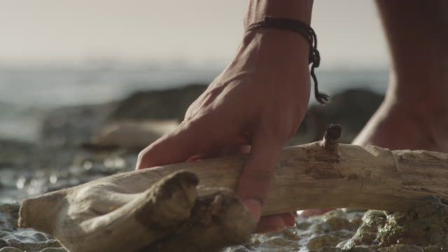 stockvideo's en b-roll-footage met a man picking up driftwood on the shore. - drijfhout