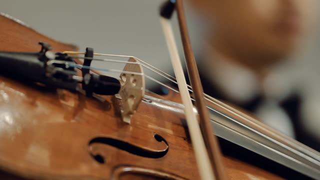 vídeos de stock, filmes e b-roll de homem tocando violino, um concerto - teatro clássico