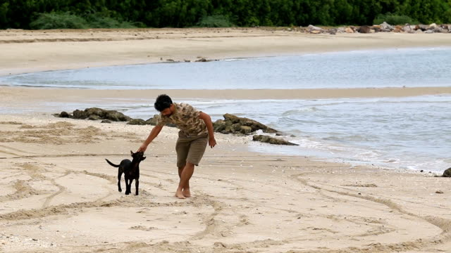 ws:man playing with his dog on the beach - obedience stock videos & royalty-free footage