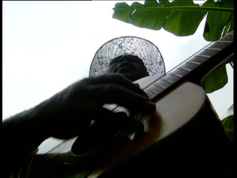 man plays guitar and sings in banana plantation windward islands - albero tropicale video stock e b–roll