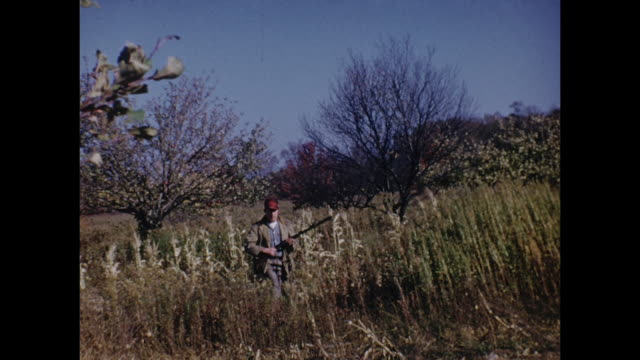 a man poses with his rifle as he prepares to hunt. - hunting stock videos & royalty-free footage