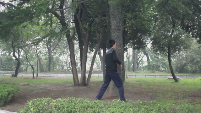 ms man practices martial arts in the park/hancheng,shaanxi,china - martial arts stock videos and b-roll footage