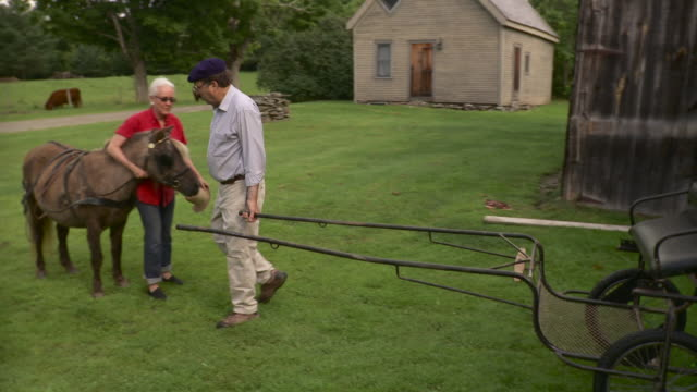 vidéos et rushes de ws pan man pulling cart out of barn and woman standing with horse / stowe, vermont, usa - voiture hippomobile