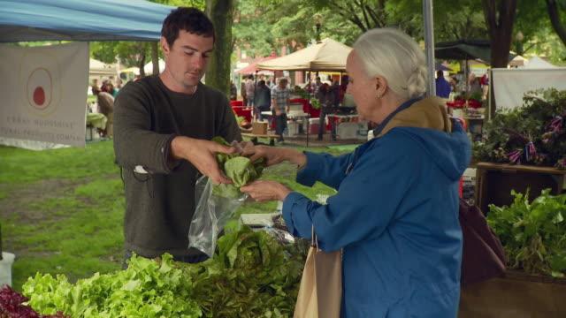 vídeos de stock e filmes b-roll de ms man putting lettuce in plastic bag for woman / burlington, vermont, usa  - mercado de produtos agrícolas