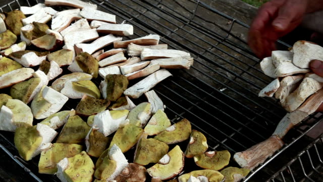 man putting sliced mushrooms on a wire rack for drying - drying rack stock videos and b-roll footage