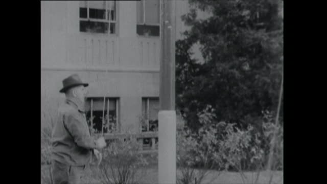 man raises flag of the united states - 1961 stock videos & royalty-free footage
