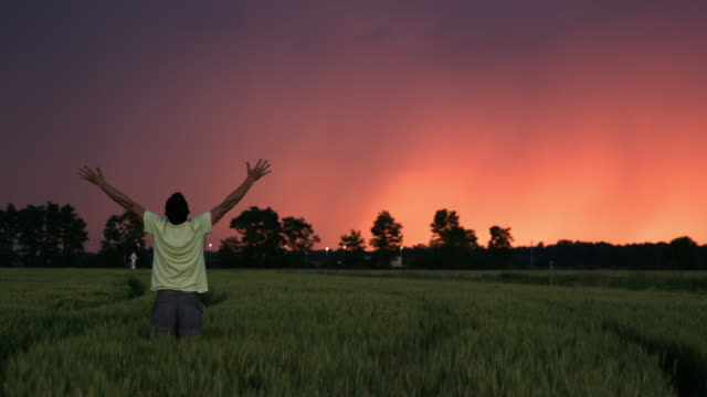 ds man raising his arms to the sky in a field at dusk - punching the air stock videos & royalty-free footage