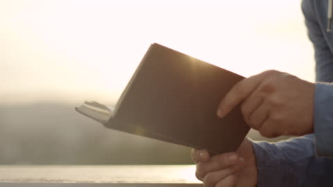 man reading a book - book stock videos & royalty-free footage