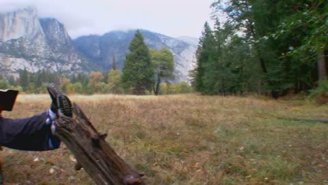 man reading near mountains in yosemite national park / california, usa - baumstumpf stock-videos und b-roll-filmmaterial