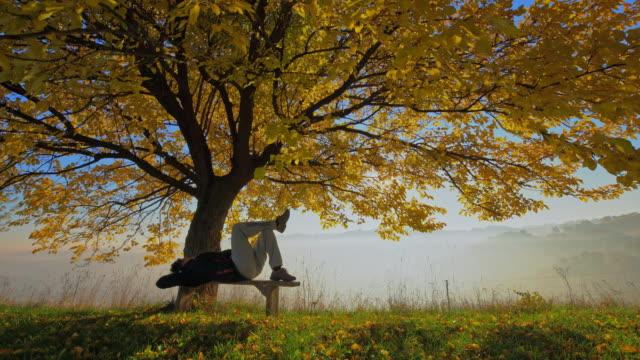 Mann entspannend auf einer Bank unter Herbst Baum