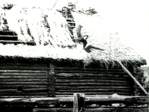 man repairing roof audio/ russia - anno 1925 video stock e b–roll