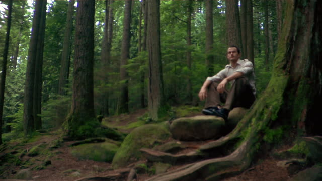 Man resting on rock during hike in forest / resuming hike