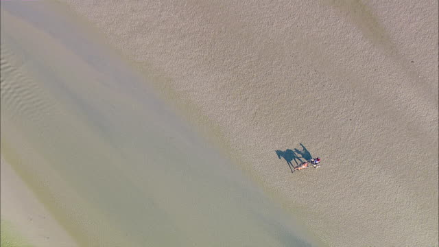 ws aerial ds zi zo  man ridding horse cart through sea shore / north frisian sea,  schleswig-holstein, germany - north sea stock videos & royalty-free footage