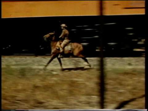 vídeos de stock e filmes b-roll de 1941 ts man rides a horse next to a train / united states - animal de trabalho