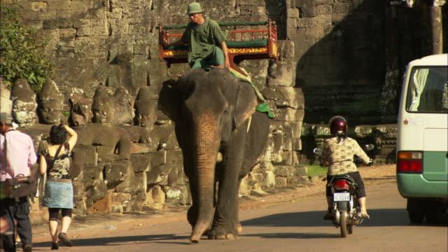 a man rides an elephant outside the angkor wat temple complex in cambodia. - ペディキャブ点の映像素材/bロール