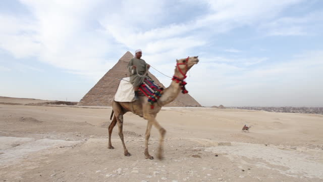A man rides his camel past a pyramid in Cairo.