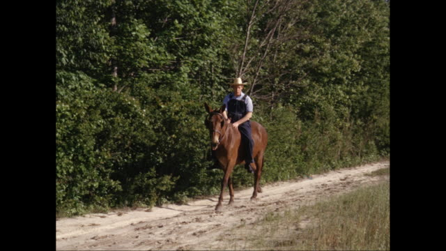 ws ts man riding a horse on single track with trees in background / united states - bib overalls stock videos and b-roll footage
