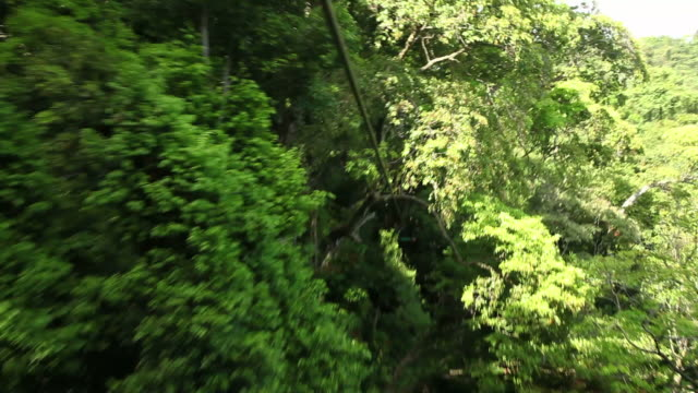 Man riding a zipline on a canopy tour