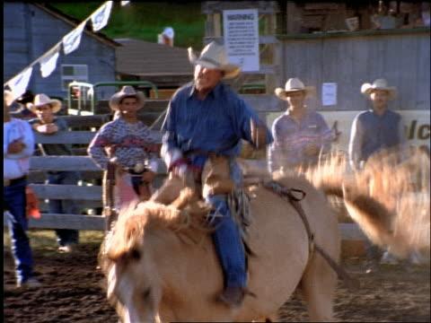 man riding bucking bronco in rodeo / falls off - ロデオ点の映像素材/bロール