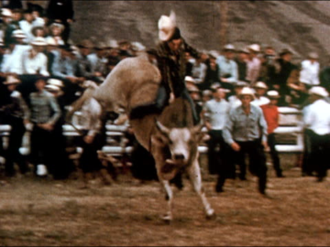 1950 man riding bucking bull in rodeo / man's cowboy hat flying off / gunnison, colorado / audio - gunnison stock videos & royalty-free footage