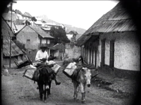 1930 ws man riding donkey following two other donkeys loaded with packages through village / mexico city, mexico - arbetsdjur bildbanksvideor och videomaterial från bakom kulisserna