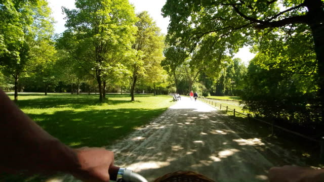 man riding folding bicycle in public park - gartenanlage stock-videos und b-roll-filmmaterial