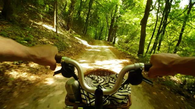 Mann reitet Falten Fahrrad im sonnigen Wald