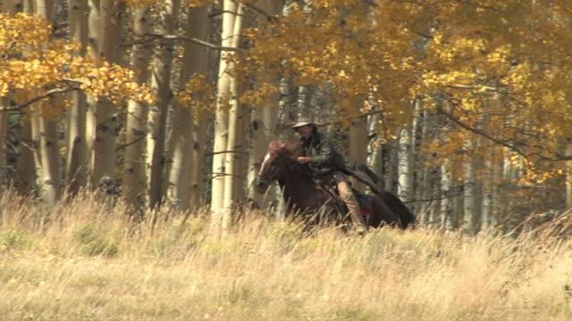 ws, ts, man riding horse in autumn landscape, colorado, usa - 乗馬点の映像素材/bロール