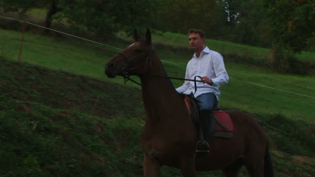 Man riding horse in nature