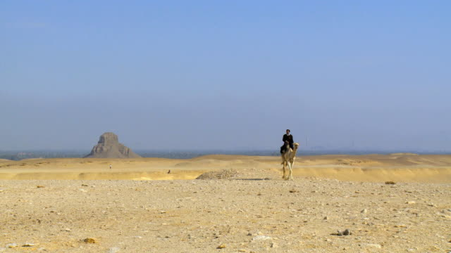 WS Man riding on camel in desert with Black pyramid of Amenemhat III in background / Dahshur, Egypt