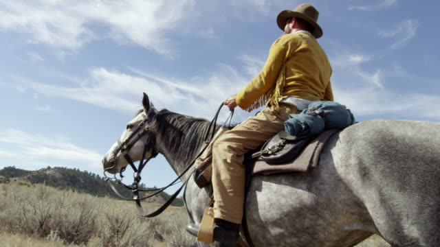 stockvideo's en b-roll-footage met ms reenactment man riding on horse on grassy landscape / montana, united states - alleen één mid volwassen man