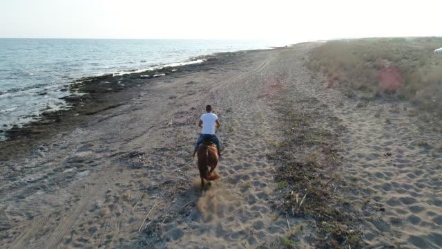 mann reitet auf dem pferd am strand auf sonnenuntergang - pferd stock-videos und b-roll-filmmaterial