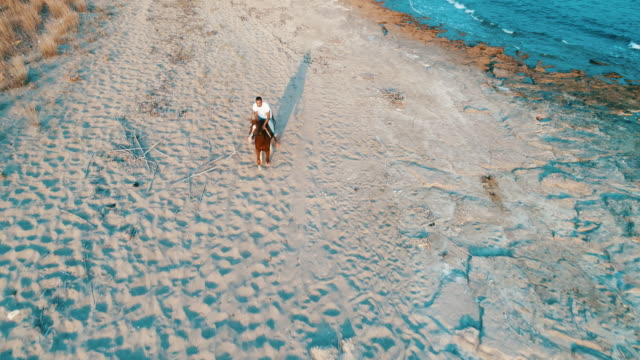 man riding on horse on the beach over sunset - horseback riding stock videos & royalty-free footage