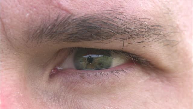 vídeos de stock, filmes e b-roll de a man rolls and blinks his eye. - sobrancelha