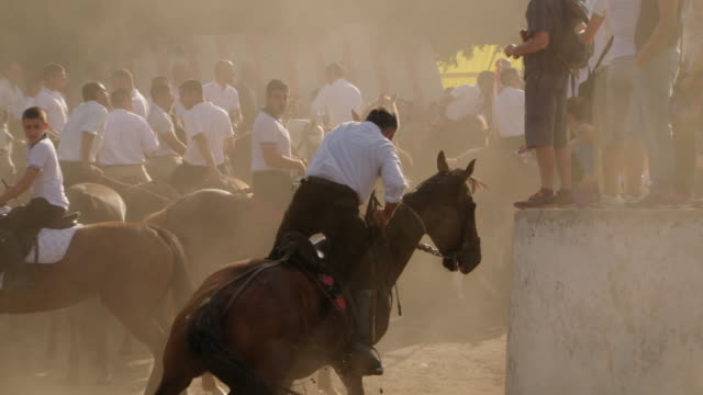 """man rounds corner through dust in horse race, italy - """"bbc universal"""" video stock e b–roll"""