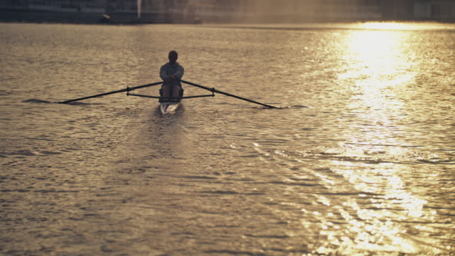 man rowing boat in river during sunset - sculling video stock e b–roll