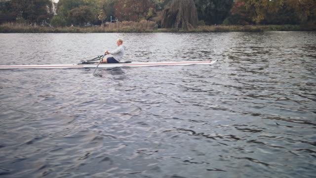 man rowing boat in river - sculling stock videos & royalty-free footage
