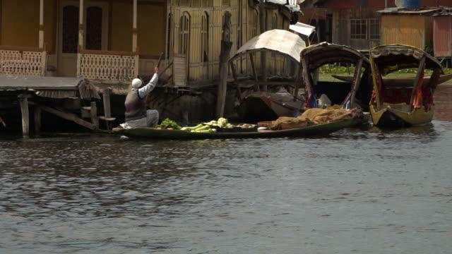 man rowing canoe full of vegetavles - jammu e kashmir video stock e b–roll