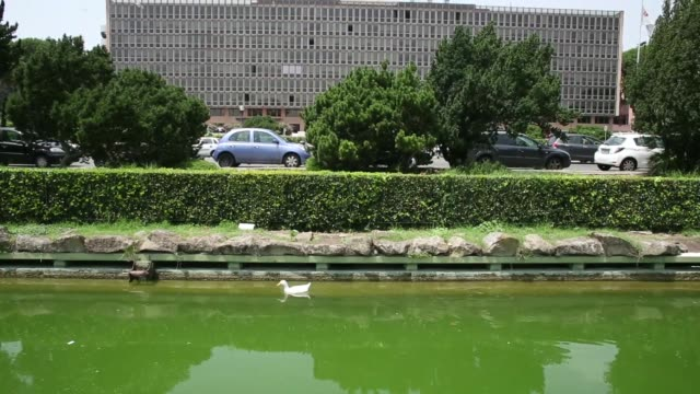 A man rows across a pond opposite the UniCredit SpA headquarters in Rome Italy on Friday July 4 A duck swims in a pond tilt up to UniCredit HQ office...