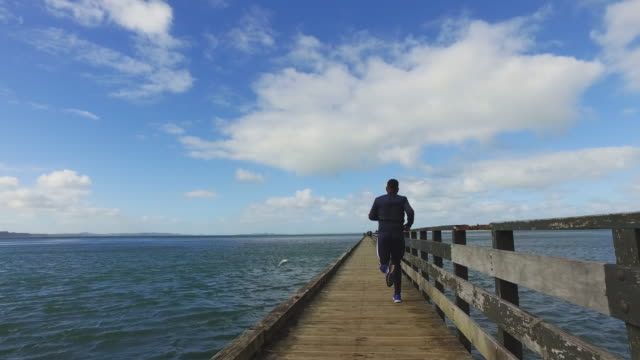 a man running at wharf, auckland, new zealand. - 20 24 years stock-videos und b-roll-filmmaterial