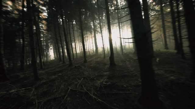 POV Man running in a dark forest