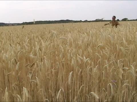 vídeos de stock, filmes e b-roll de homem correndo no campo de trigo - braço humano