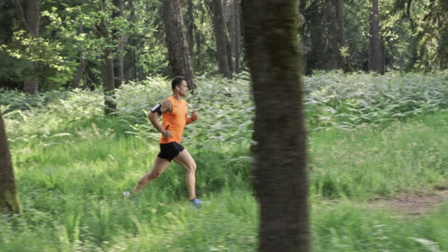 SLO MO DS Man running on a forest trail in sunshine