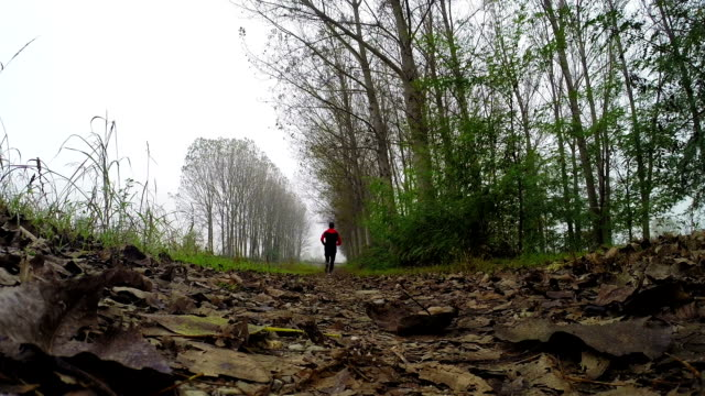 man running on country road - pjphoto69 stock videos & royalty-free footage