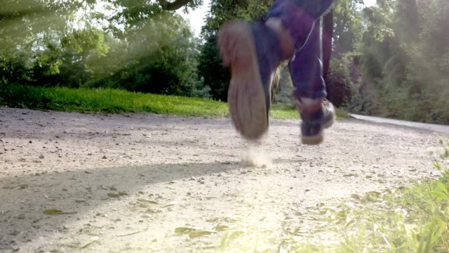 man runs over dusty path in the park in the sunshine - tina terras michael walter stock videos & royalty-free footage