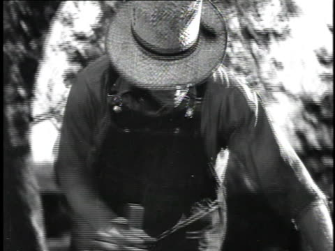 vídeos de stock, filmes e b-roll de 1923 ms man sawing log / united states - 1923