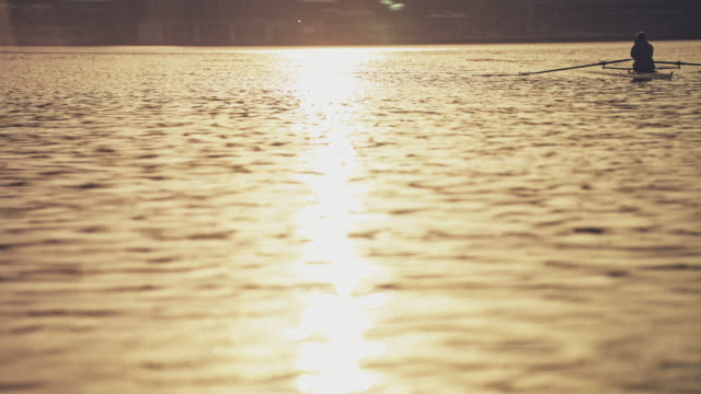 man sculling boat in river during sunset - sculling stock videos & royalty-free footage