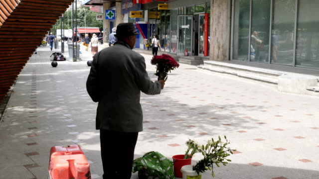 man selling flowers in street with traditional clothes /  bucharest - beggar stock videos & royalty-free footage