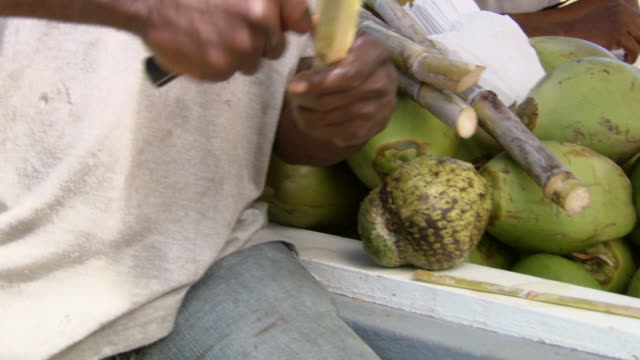ms tu man selling sugarcane  / brightown, barbados - sugar cane stock videos & royalty-free footage