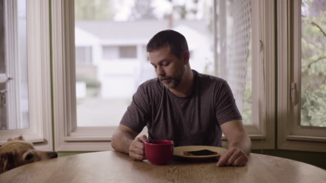 a man sits at the kitchen table with a piece of burnt toast. - seattle coffee stock videos and b-roll footage